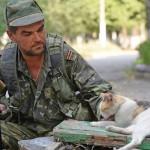 В ОБСЕ не считают украинских ополченцев «сепаратистами»