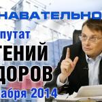 Беседа с депутатом Государственной Думы Евгением Фёдоровым 17 декабря 2014